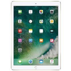 تبلت اپل iPad Pro 12.9 inch LTE - 512GB