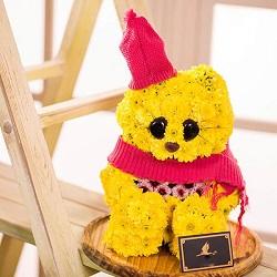 عروسک کیتی با گلهای داوودی زیبا