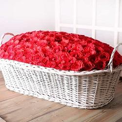 سبد گل دیزاین شده با صدها گل رز ایرانی