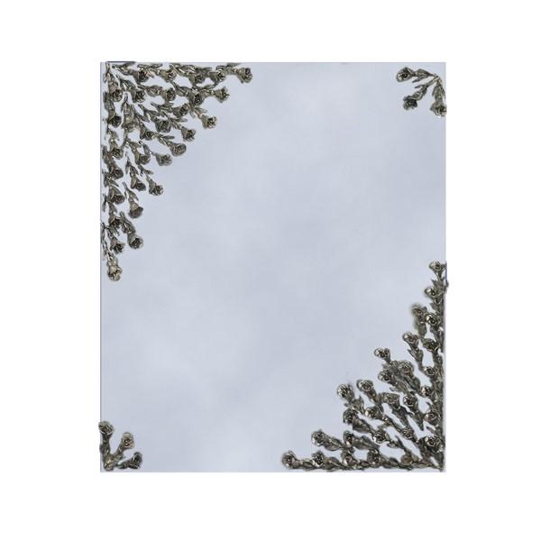 آینه گلرز نقره اهتمام S161110005